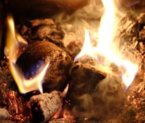 wood fuel online review