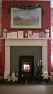 Small Stove Installed in a Household Fireplace